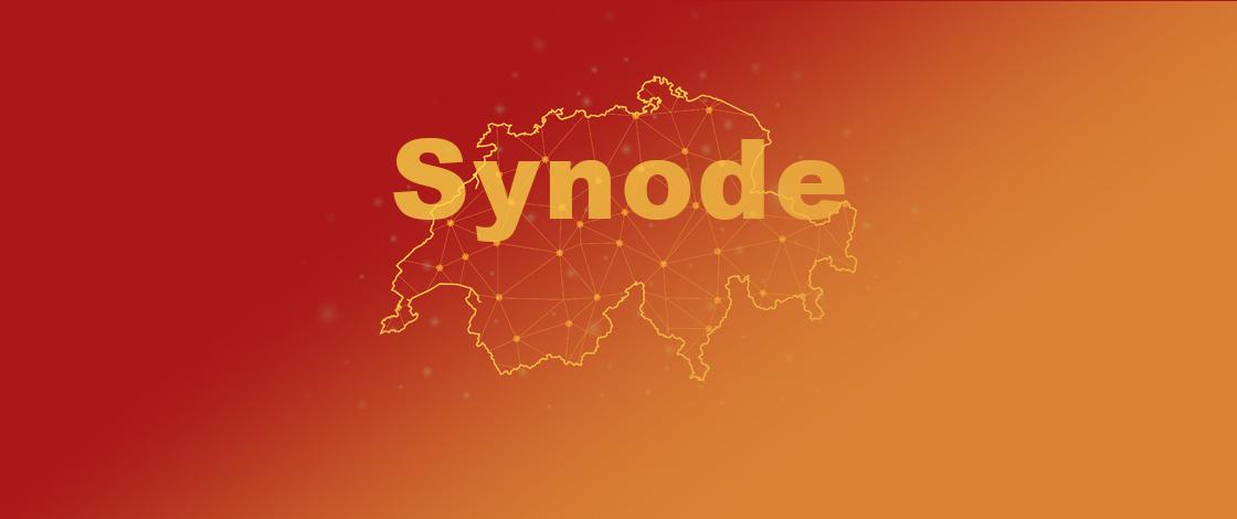 virtuelle Synode