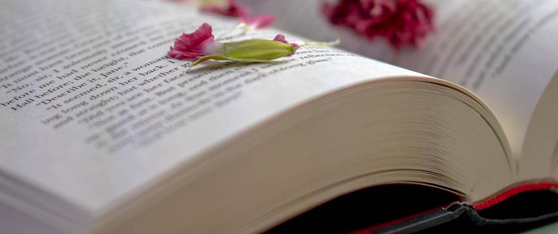 Offenes Buch mit roten Blumen bestreut