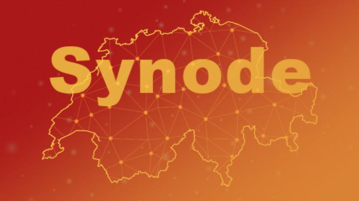 Erste virtuelle Synode in Bern